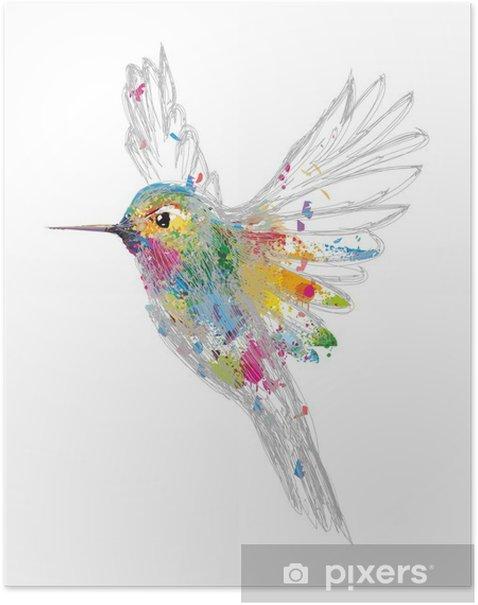 Plakat Koliber - Nauka i natura