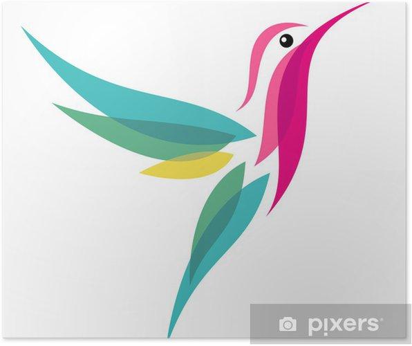 Plakát Kolibřík - Ptáci