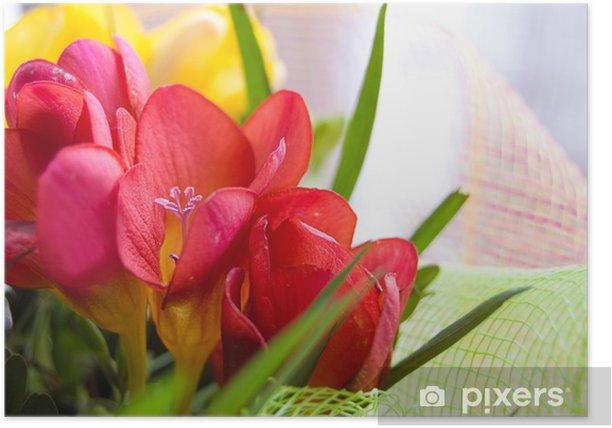 Plakat Kolorowe Freesias - Kwiaty