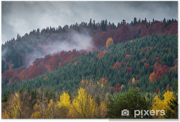 Plakat Kolorowe Nature - Krajobrazy