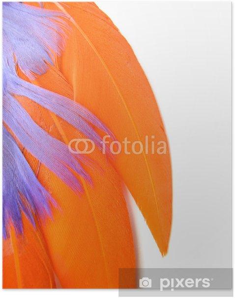 Plakat Kolorowe pióra zbliżenie - pomarańczowy, fioletowy - Ptaki