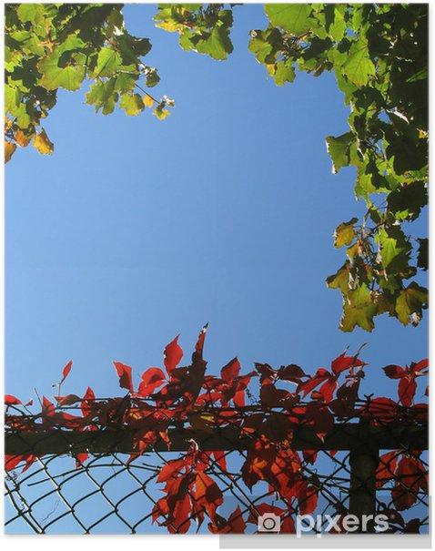 Plakat Kolorowy bluszcz na łańcucha link ogrodzenia - Pory roku