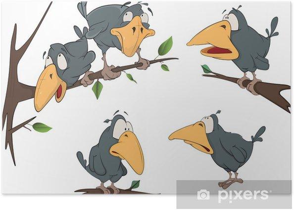 Plakát Kompletní sada veselá havrana - Ptáci