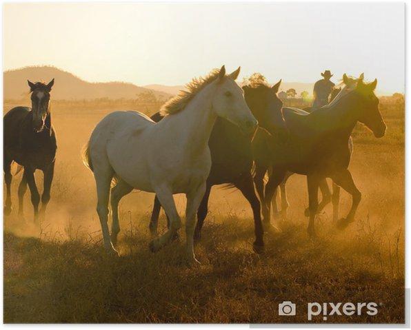 Plakat Konie o zmierzchu - Rolnictwo