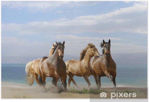 Plakat Konie uruchomić - Tematy