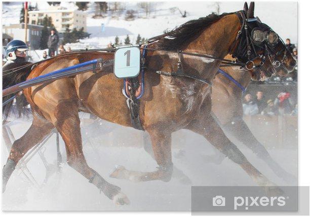 Plakat Konie - Sporty indywidualne