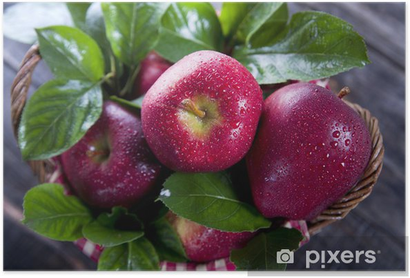 Plakát Koš červených jablek - Jídla
