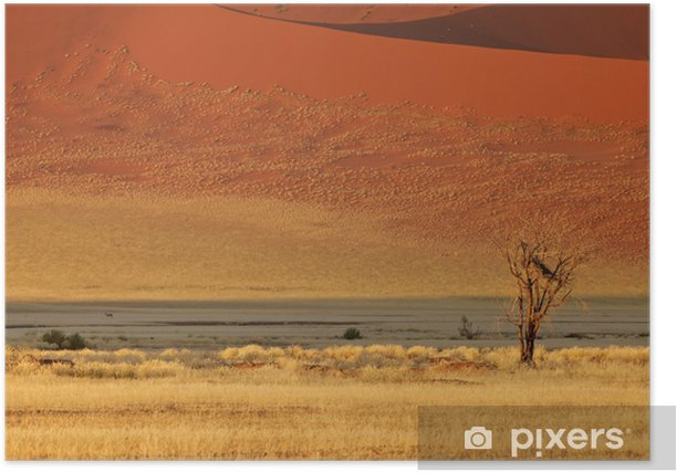 Plakat Krajobraz pustyni, Sossusvlei, Namibia - Afryka