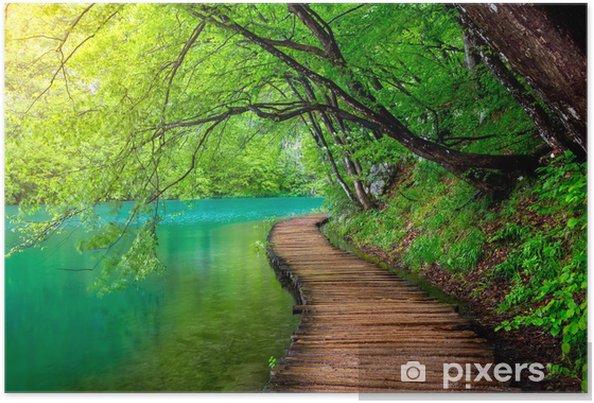 Plakat Krystalicznie czysta woda i drewniana ścieżka. Jeziora Plitwickie, Chorwacja - Tematy
