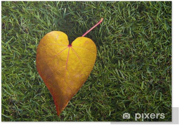 Plakat Kształt serca spadł liść z zielonym tle trawy - Rośliny