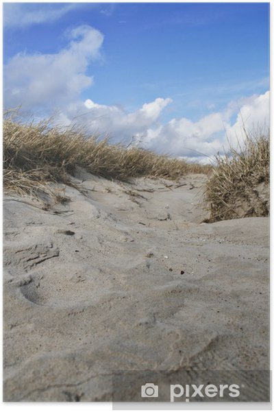 Plakát Küste, Beach, Gräser - Voda