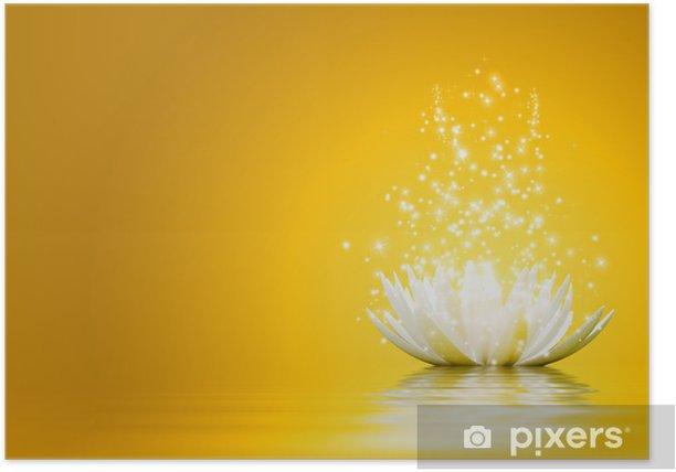 Plakat Kwiat lotosu - Tła