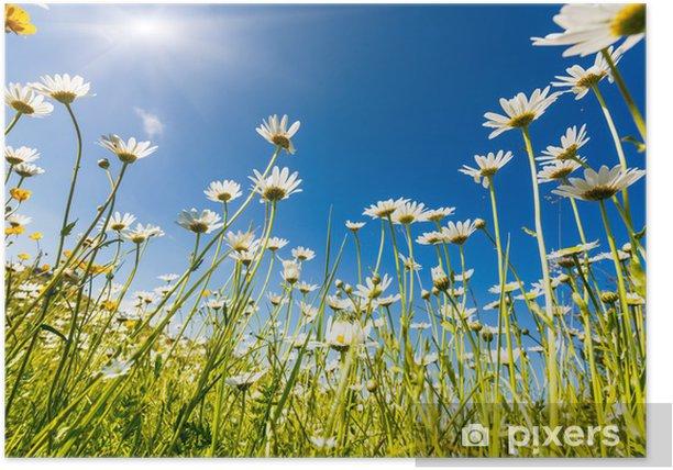 Plakat Kwiat - Krajobraz wiejski
