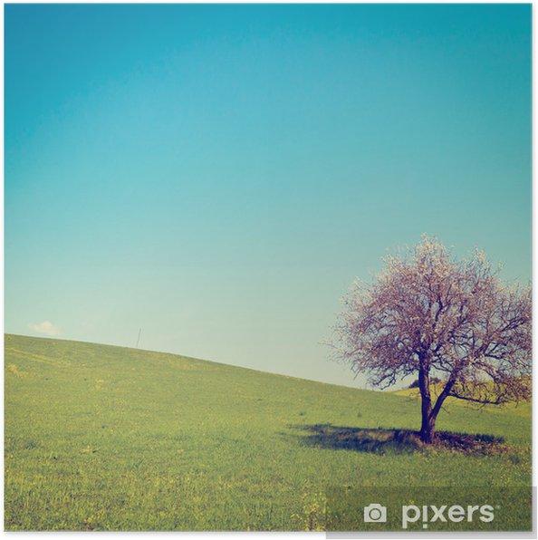 Plakat Kwitnące drzewo - Pory roku