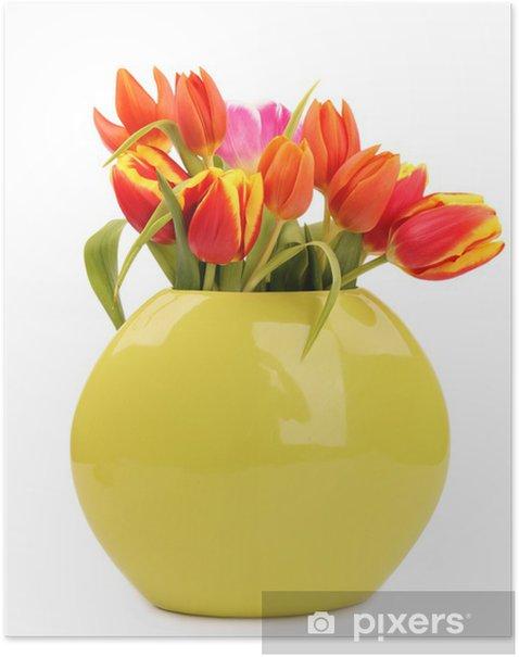 Plakát Kytici tulipánů, izolovaných na bílém pozadí - Květiny