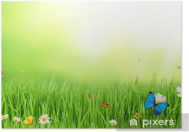 Plakat Łąka wiosną - Inne Inne