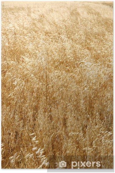 Plakat Łany zboża - Rolnictwo