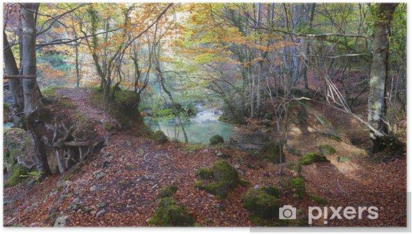 Plakat Las i zielone lake.Navarra, Hiszpania. - Sporty na świeżym powietrzu