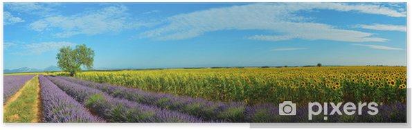 Plakat Lawendy i słoneczników - Krajobraz wiejski