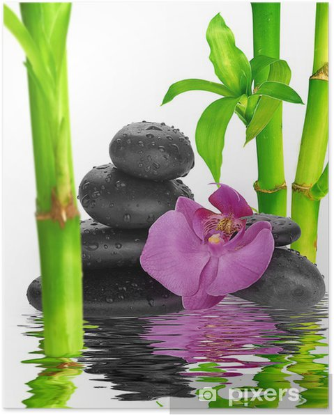 Plakát Lázně pozadí - černé kameny a bambus na vodě - Témata