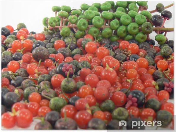 Plakát Lesní plody - Roční období