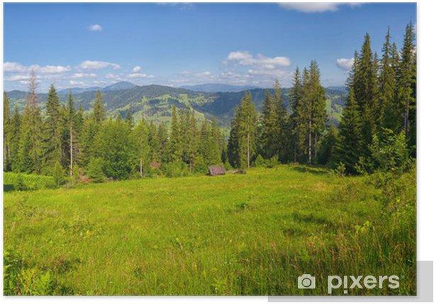 Plakat Letni krajobraz w górach Ceahlau - Lasy