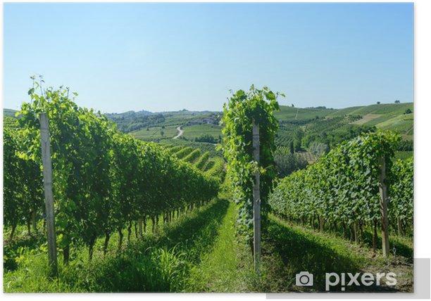 Plakat Letni krajobraz w Langhe (Włochy) - Rolnictwo