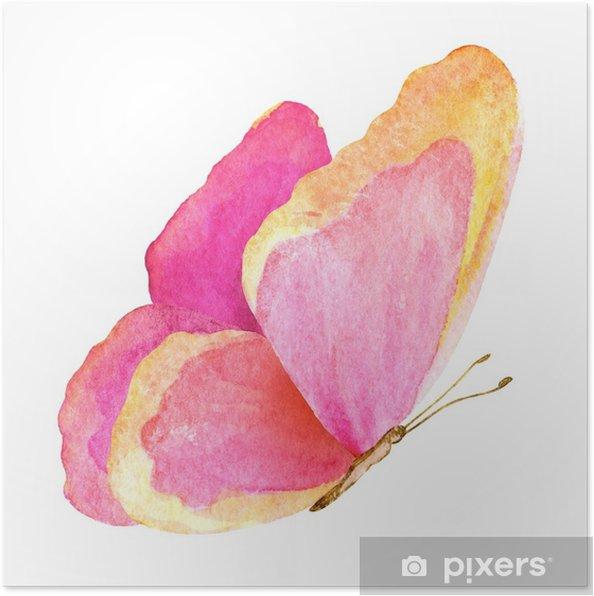 Plakat Letni motyl. akwarela ilustracja - Zwierzęta