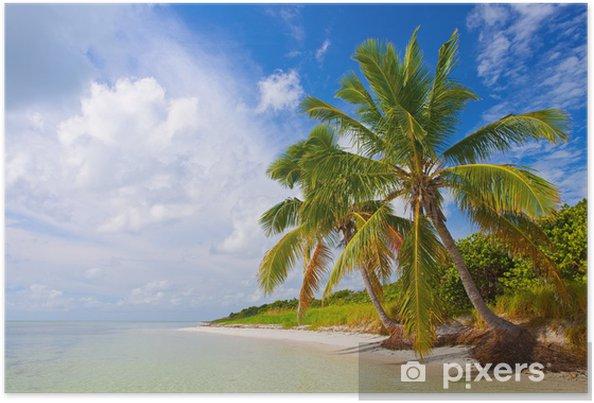 Plakát Léto v tropickém ráji v Florida Keys, USA - Témata