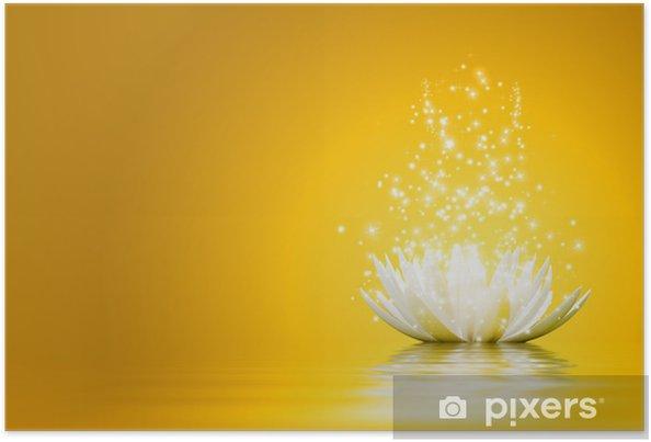 Plakát Lotus Flower - Pozadí