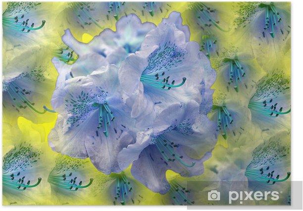 Plakát Lys - Květiny