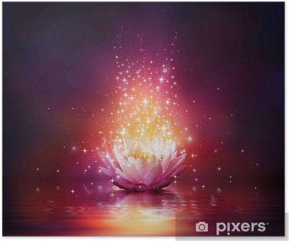 Plakat Magiczny kwiat na wodzie - Do salonu SPA & Wellness