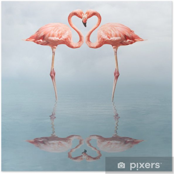 Plakat Making love - Flamingi
