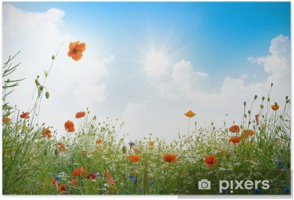 Plakát Maková pole na slunci - Témata