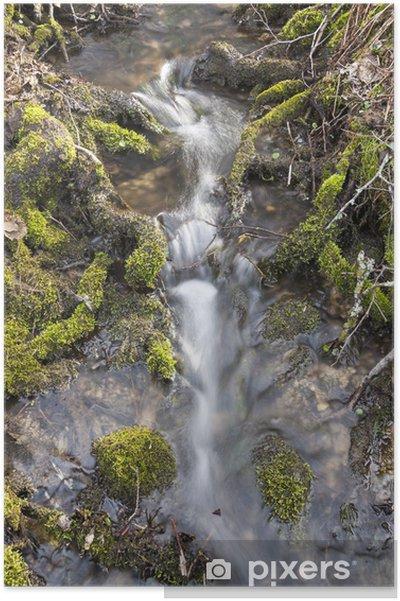 Plakat Mały wodospad w dziewiczej przyrody - Woda