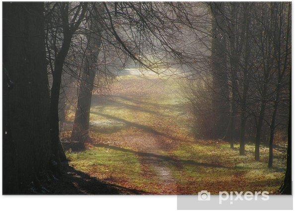 Plakát Märchenwald - Lesy