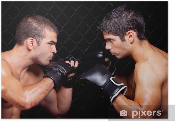 Plakat Mieszane sztuki walki przed walką - Tematy