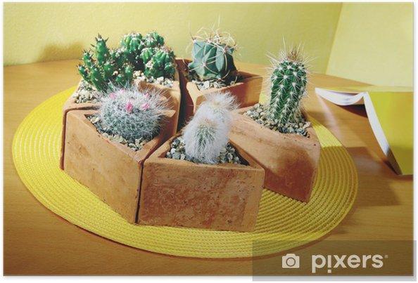 Plakat Mini Kaktus W Doniczce Na Zolty Trojkatny