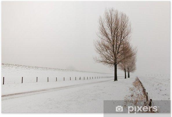 Plakat Misty zimowy krajobraz w Holandii z rzędem dużych tr - Drzewa