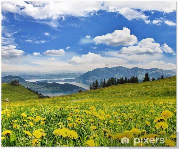 Plakat Mlecze przed szwajcarskiego jeziora: Relax wszędzie :) - Woda
