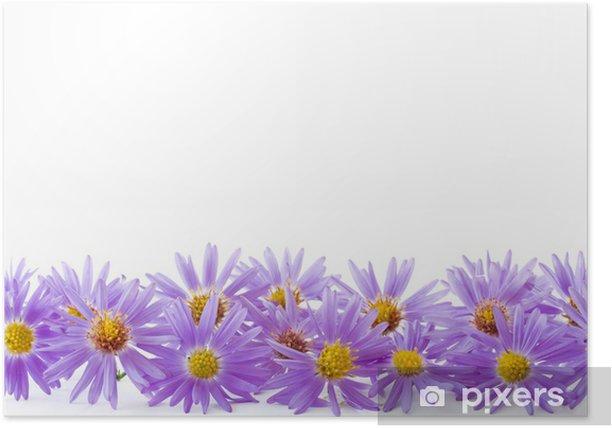 Plakát Modrá chryzantéma - Národní svátky