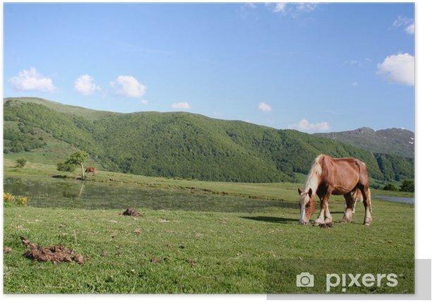 Plakát Monts du Cantal, chevaux - Hory