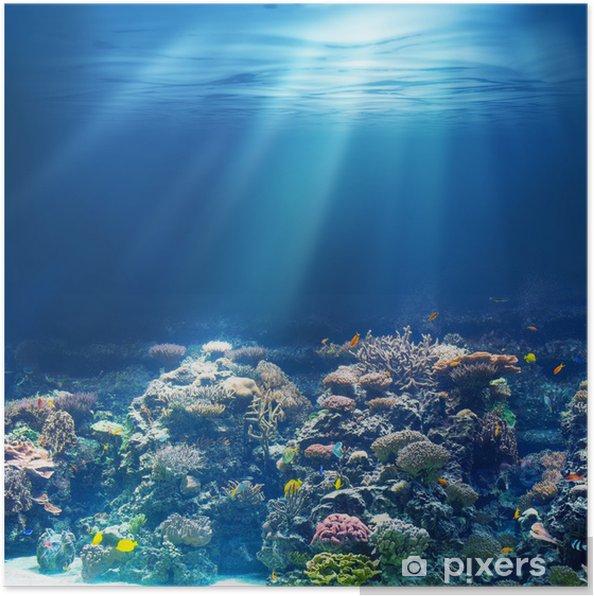 Plakat Morskiego lub oceanu podwodna rafa koralowa - Rafa koralowa
