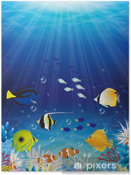 Plakat Morze - Pod wodą