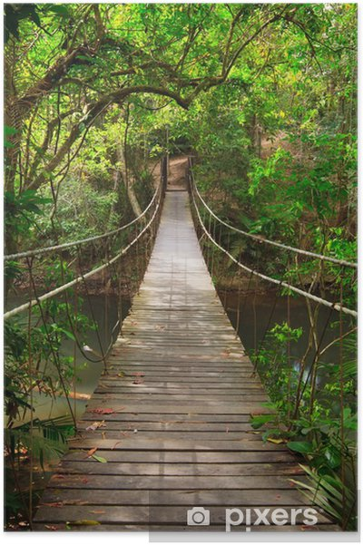 Plakat Most do dżungli, park narodowy Khao Yai, Tajlandia -