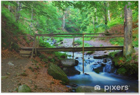 Plakát Most přes řeku - Přírodní krásy