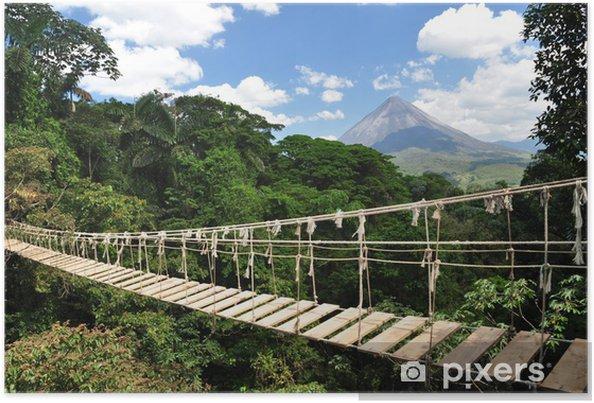 Plakat Most w dżungli - Tematy