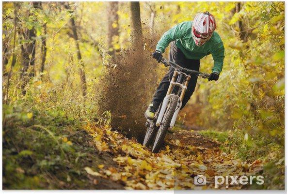 Plakat Mountainbiker jazdy w lesie jesienią - Kolarstwo