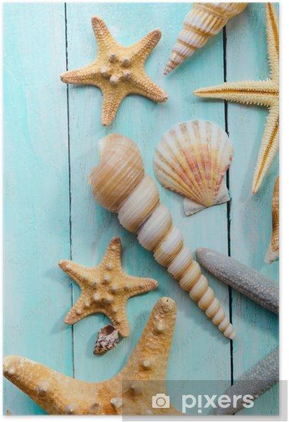 Plakat Muszle nad drewnianym tle - Zwierzęta żyjące pod wodą
