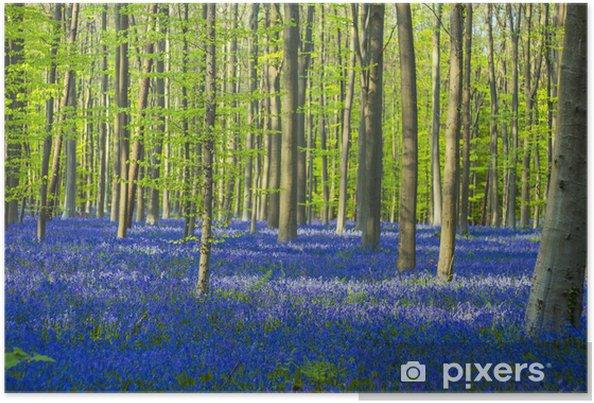 Plakat Niebieski i zielony / kolorowe dzwonki las - Wakacje